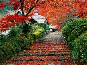 Garden-Staircase-Japan