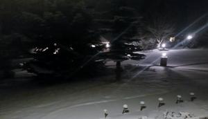 WA Feb winter
